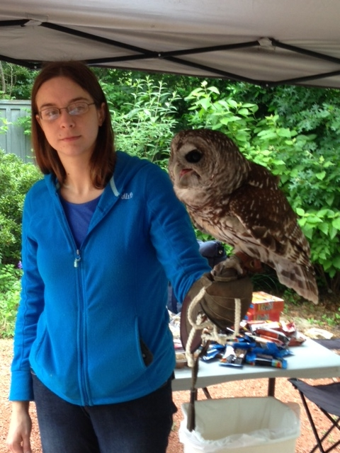 Nature Appr. Day owl